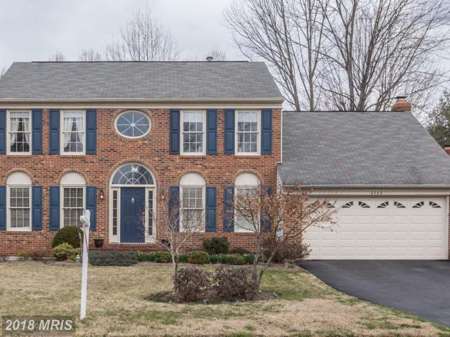 6402 Springhouse Circle, Clifton, VA 20124 (#FX10176825) :: Long & Foster