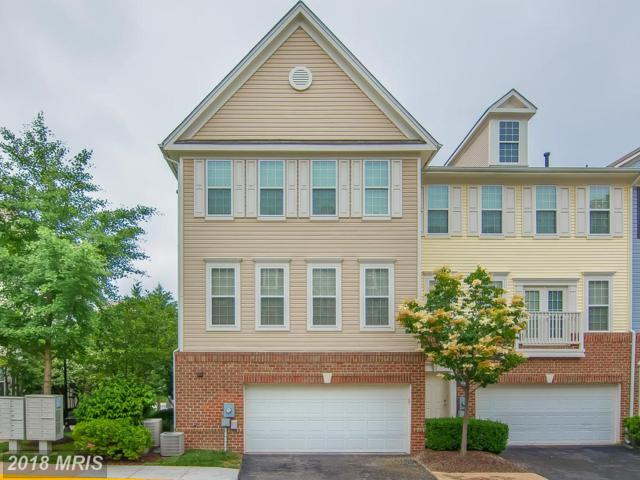 8058 Nicosh Circle Lane #46, Falls Church, VA 22042 (#FX10178982) :: Circadian Realty Group
