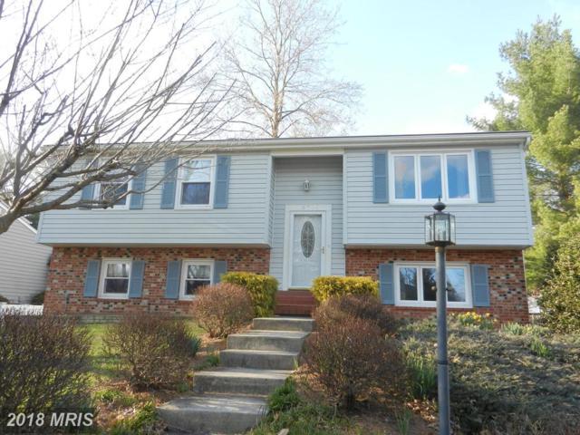 15316 Blueridge View Drive, Centreville, VA 20120 (#FX10180656) :: Jacobs & Co. Real Estate