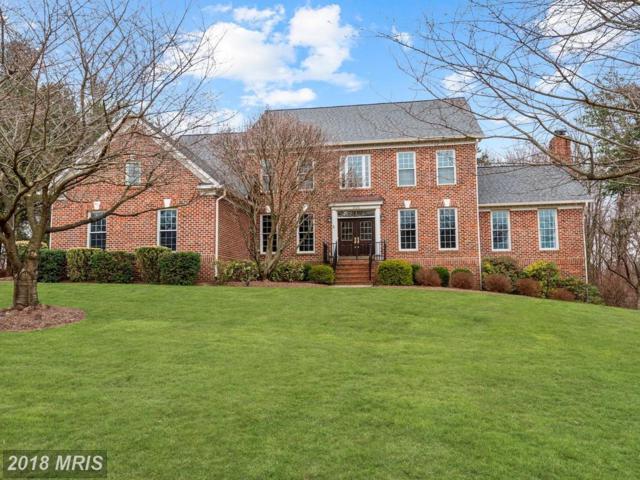 1226 Colvin Meadows Lane, Great Falls, VA 22066 (#FX10180739) :: Bic DeCaro & Associates