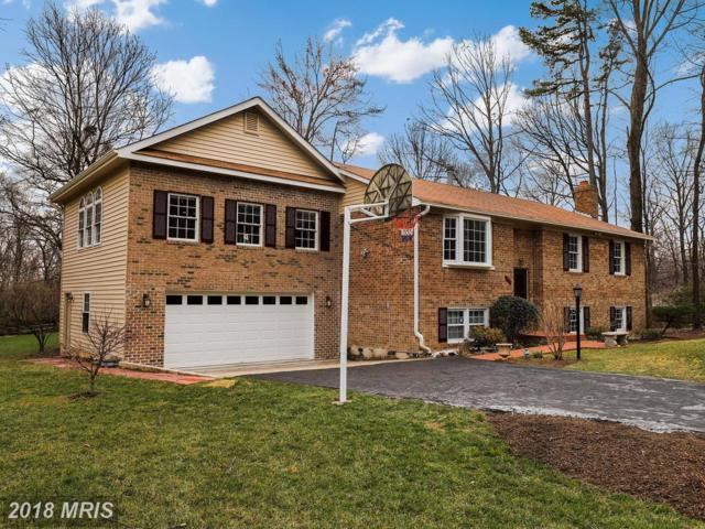3505 Willow Green Court, Oakton, VA 22124 (#FX10181340) :: Long & Foster