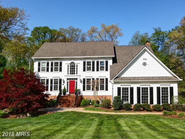 860 Golden Arrow Street, Great Falls, VA 22066 (#FX10181393) :: Great Falls Great Homes
