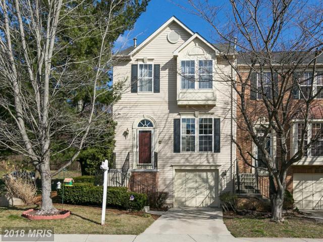 14380 Stonewater Court, Centreville, VA 20121 (#FX10181980) :: Samantha Bendigo