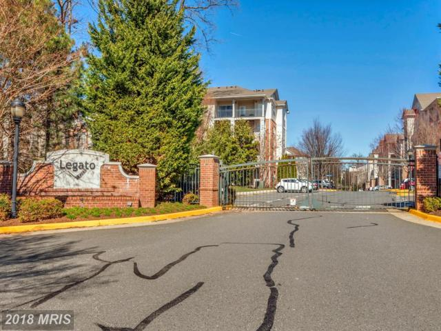 12140 Garden Grove Circle #202, Fairfax, VA 22030 (#FX10183249) :: Bic DeCaro & Associates