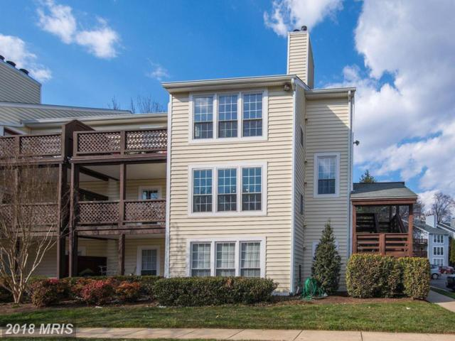 10175 Oakton Terrace Road #10175, Oakton, VA 22124 (#FX10183307) :: Long & Foster