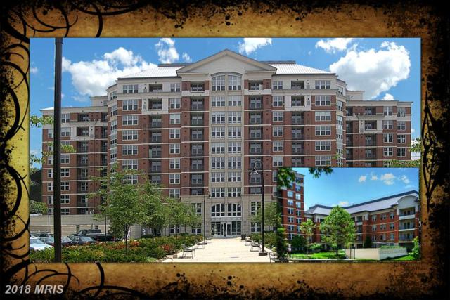 11770 Sunrise Valley Drive #224, Reston, VA 20191 (#FX10184091) :: Circadian Realty Group