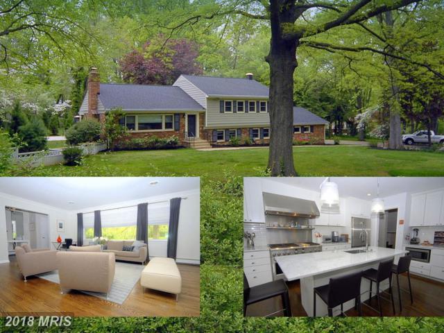 7412 Shenandoah Avenue, Annandale, VA 22003 (#FX10187867) :: Green Tree Realty