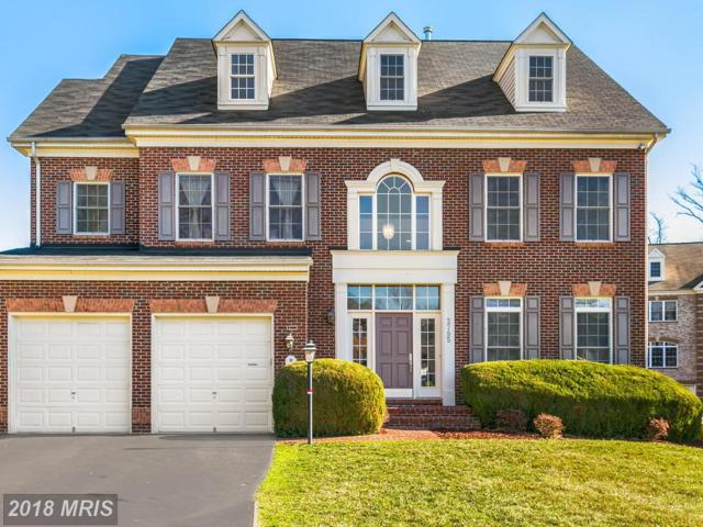 3795 Maryalice Place, Falls Church, VA 22041 (#FX10188081) :: Arlington Realty, Inc.