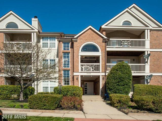 7502 Ashby Lane C, Alexandria, VA 22315 (#FX10188470) :: CR of Maryland