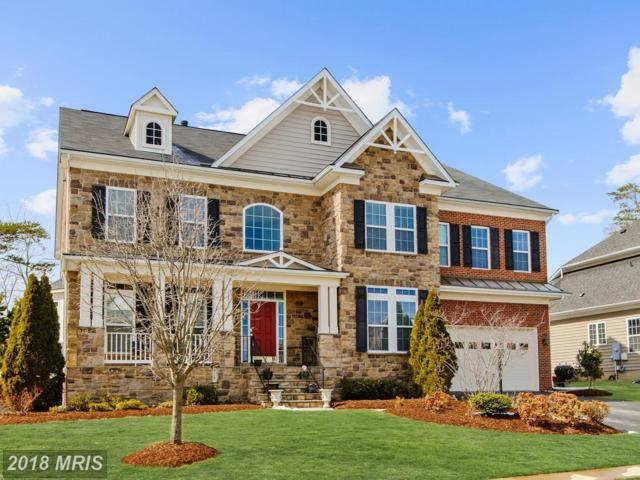 7532 Red Hill Drive, Springfield, VA 22153 (#FX10188711) :: RE/MAX Cornerstone Realty