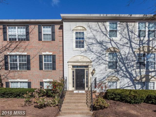 12106 Green Leaf Court #82, Fairfax, VA 22033 (#FX10188727) :: RE/MAX Executives