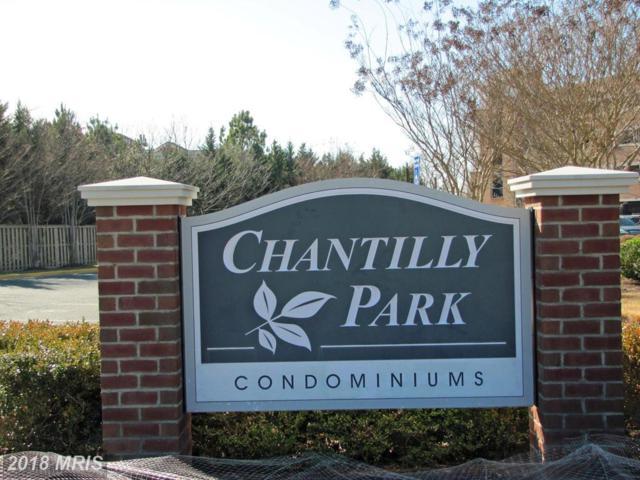 3820 Lightfoot Street #216, Chantilly, VA 20151 (#FX10189011) :: RE/MAX Executives