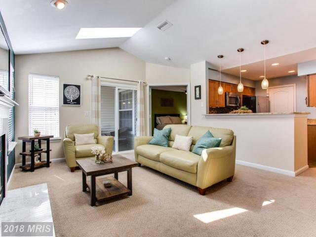 5608 Willoughby Newton Drive #32, Centreville, VA 20120 (#FX10190065) :: The Greg Wells Team