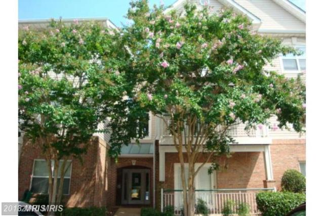 6561 Grange Lane #103, Alexandria, VA 22315 (#FX10195299) :: The Greg Wells Team