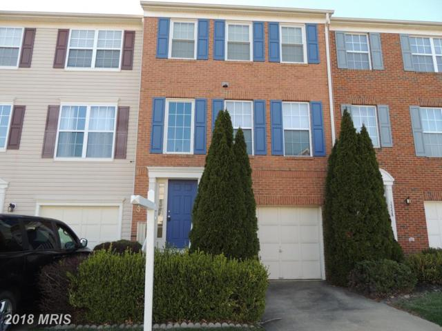 13230 Rolling Plains Court, Herndon, VA 20171 (#FX10196632) :: The Belt Team