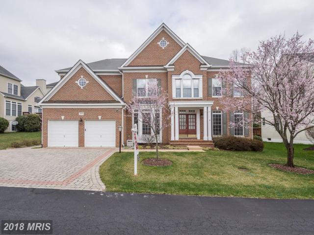 8639 Hillside Manor Drive, Springfield, VA 22152 (#FX10199062) :: The Belt Team