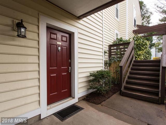 9923 Oakton Terrace Road #9923, Oakton, VA 22124 (#FX10199300) :: Keller Williams Pat Hiban Real Estate Group