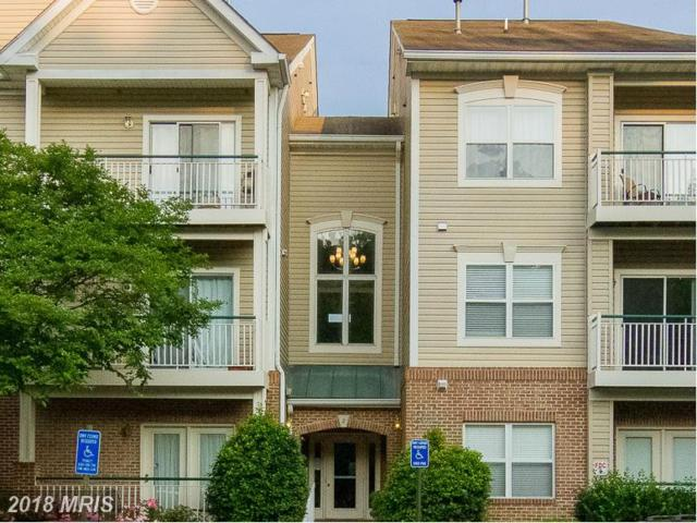 6579 Grange Lane #104, Alexandria, VA 22315 (#FX10199337) :: The Greg Wells Team