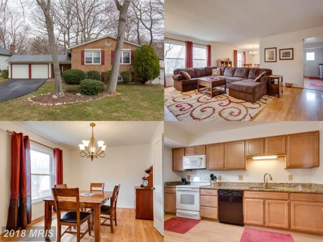 9220 Rockefeller Lane, Springfield, VA 22153 (#FX10199474) :: The Withrow Group at Long & Foster