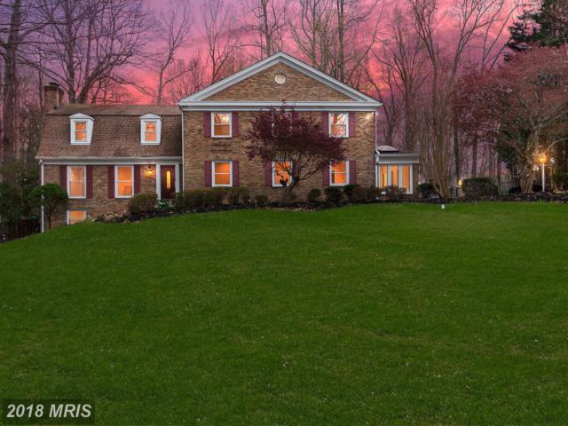 7368 Clifton Road, Clifton, VA 20124 (#FX10200021) :: Bruce & Tanya and Associates