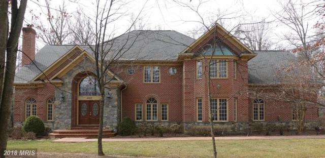 2466 Oakton Hills Drive, Oakton, VA 22124 (#FX10203874) :: The Putnam Group