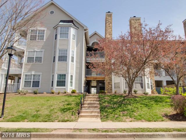 5636 Willoughby Newton Drive #36, Centreville, VA 20120 (#FX10204068) :: The Greg Wells Team