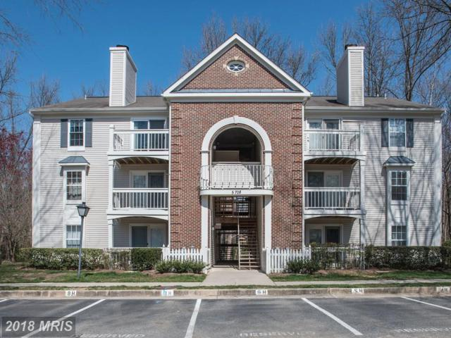 5708 Shadwell Court #97, Alexandria, VA 22309 (#FX10205364) :: ExecuHome Realty