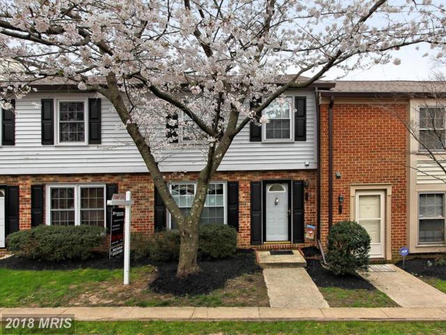 5732 Independence Circle, Alexandria, VA 22312 (#FX10206031) :: Provident Real Estate