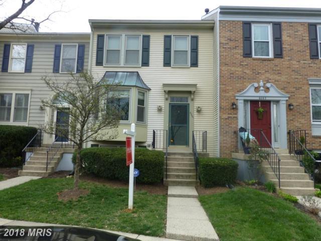 6061 Joust Lane, Alexandria, VA 22315 (#FX10207492) :: Browning Homes Group