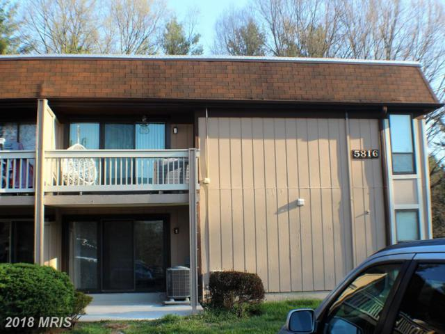 5816-D Royal Ridge Drive D, Springfield, VA 22152 (#FX10209538) :: The Greg Wells Team