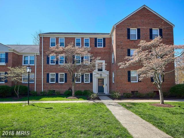 6628 E Wakefield Drive A1, Alexandria, VA 22307 (#FX10210047) :: Dart Homes