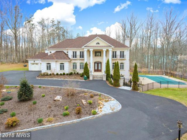 13200 Springdale Estates Road, Clifton, VA 20124 (#FX10210218) :: Bruce & Tanya and Associates