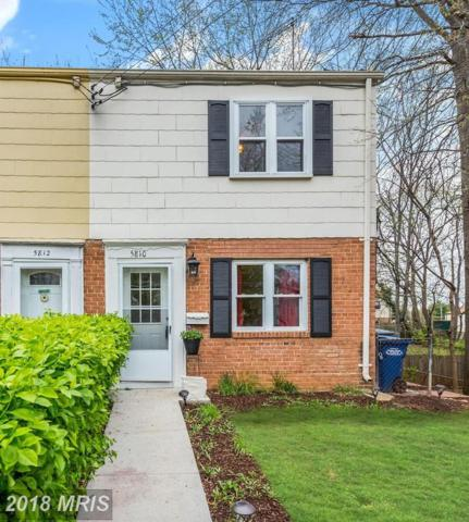 5810 Fifer Drive, Alexandria, VA 22303 (#FX10213359) :: Keller Williams Pat Hiban Real Estate Group