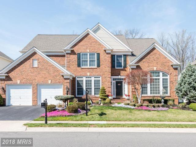8136 Bluebonnet Drive, Lorton, VA 22079 (#FX10213445) :: Browning Homes Group
