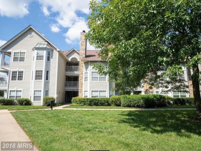 5624 Willoughby Newton Drive #32, Centreville, VA 20120 (#FX10213480) :: The Greg Wells Team