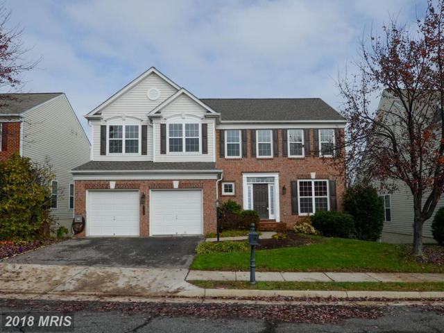 8196 Paper Birch Drive, Lorton, VA 22079 (#FX10213562) :: Browning Homes Group