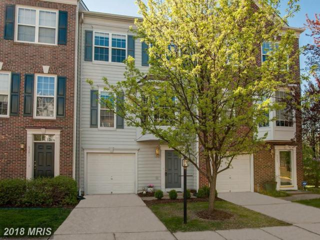 6393 Levtov Landing, Alexandria, VA 22312 (#FX10213844) :: The Greg Wells Team