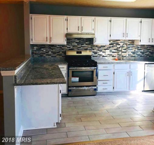 9987 Oakton Terrace Road #9987, Oakton, VA 22124 (#FX10215208) :: Pearson Smith Realty