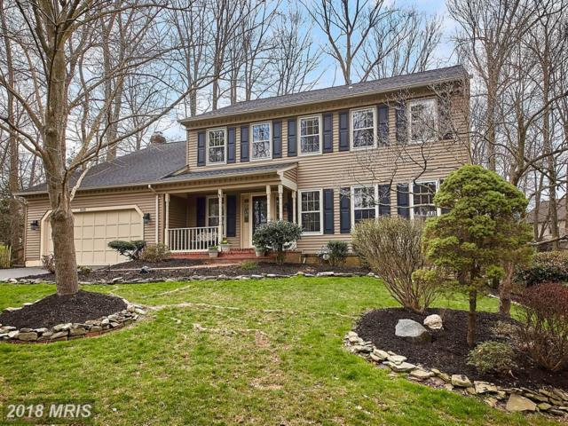 1610 Montmorency Drive, Vienna, VA 22182 (#FX10215287) :: Great Falls Great Homes