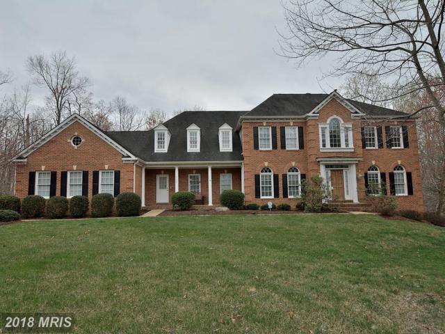 7523 Detwiller Drive, Clifton, VA 20124 (#FX10215318) :: Browning Homes Group