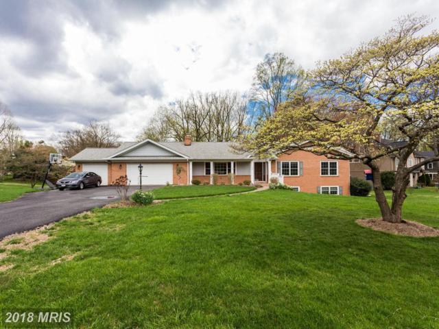 736 Lawton Street, Mclean, VA 22101 (#FX10215925) :: Great Falls Great Homes