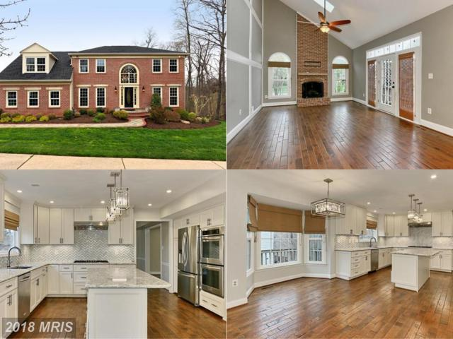 6850 Compton Heights Circle, Clifton, VA 20124 (#FX10216045) :: The Dwell Well Group