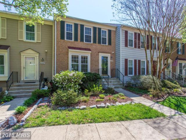 7469 Duddington Drive, Alexandria, VA 22315 (#FX10216330) :: Great Falls Great Homes