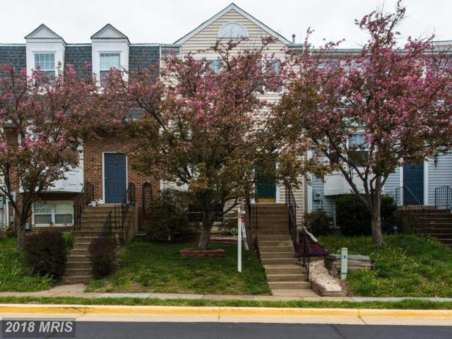 13986 Antonia Ford Court, Centreville, VA 20121 (#FX10216502) :: Pearson Smith Realty