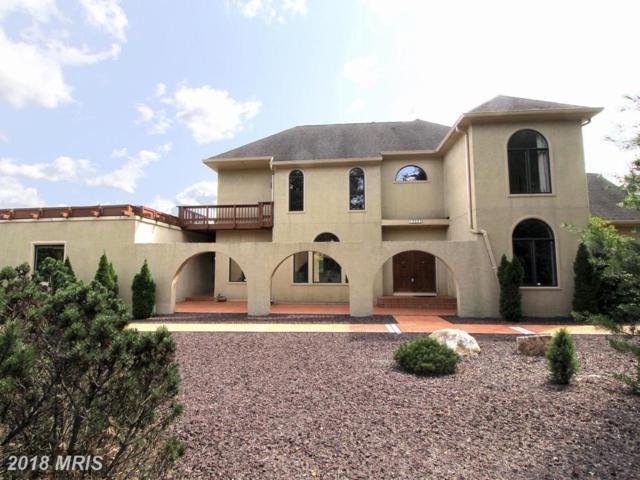 12025 Seven Hills Lane, Clifton, VA 20124 (#FX10216635) :: Bruce & Tanya and Associates