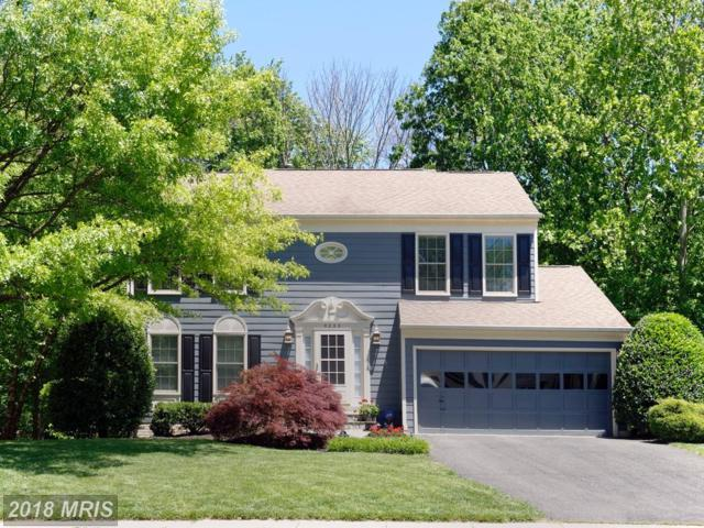 5232 Glen Meadow Road, Centreville, VA 20120 (#FX10216685) :: Fine Nest Realty Group
