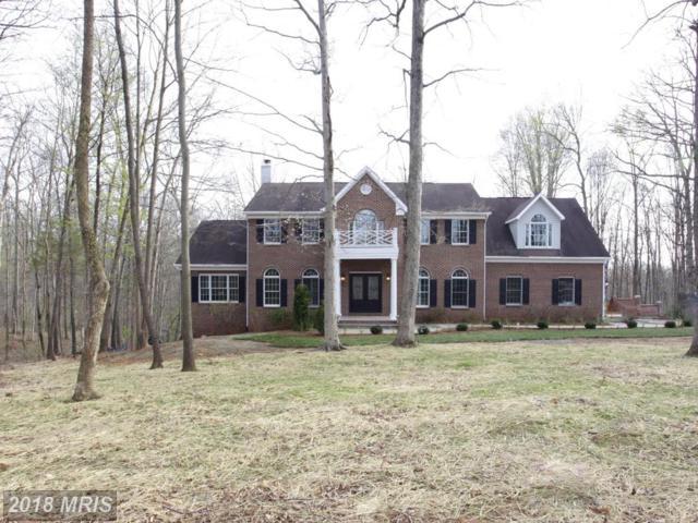 12031 Thomas Avenue, Great Falls, VA 22066 (#FX10216979) :: Browning Homes Group