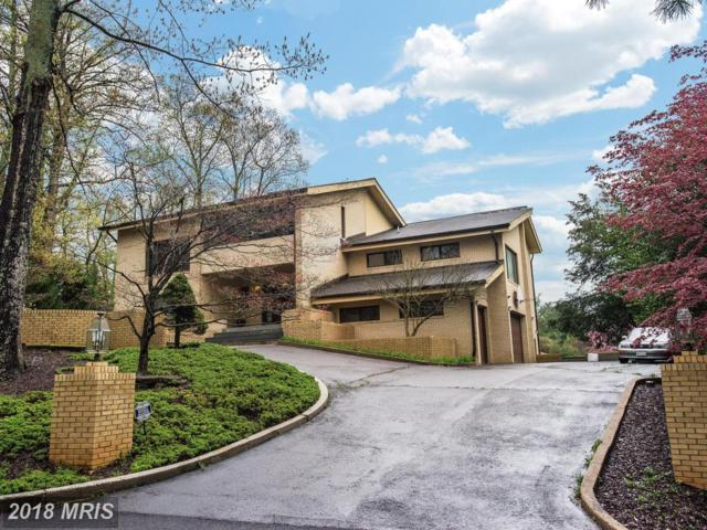 745 Potomac River Road, Mclean, VA 22102 (#FX10217325) :: The Gus Anthony Team