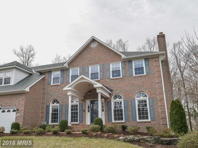 6626 Rock Lawn Drive, Clifton, VA 20124 (#FX10217473) :: Bruce & Tanya and Associates