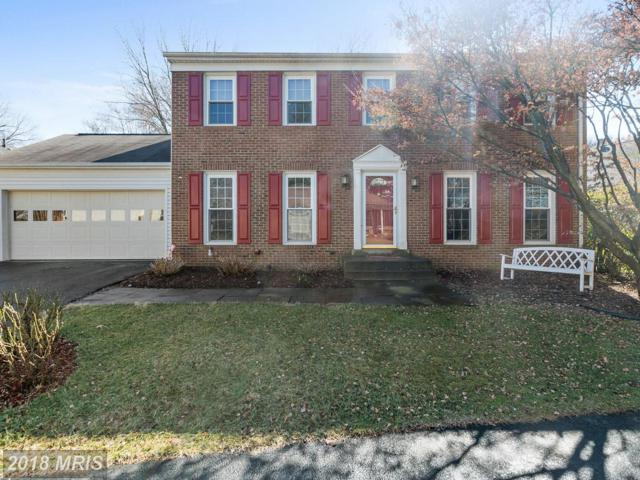 5556 Ann Peake Drive, Fairfax, VA 22032 (#FX10217596) :: Fine Nest Realty Group